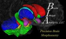 Brain Image Analysis logo
